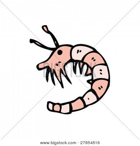 shrimp cartoon