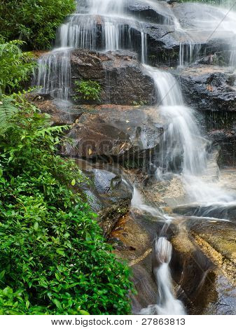 Smooth Waterfall And Green Leaves Vertical
