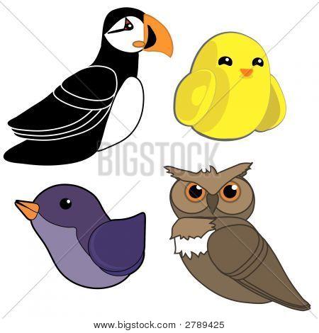 Four Different Birds