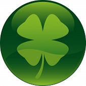 picture of four leaf clover  - Vectoral glass style Shamrock icon - JPG
