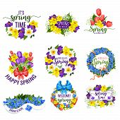 Hello Spring Flowers And Floral Bunches. Vector Blooming Bouquets Of Springtime Tulips, Daffodils Or poster