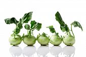 Fresh kohlrabi with leafy stems still attached on white background poster
