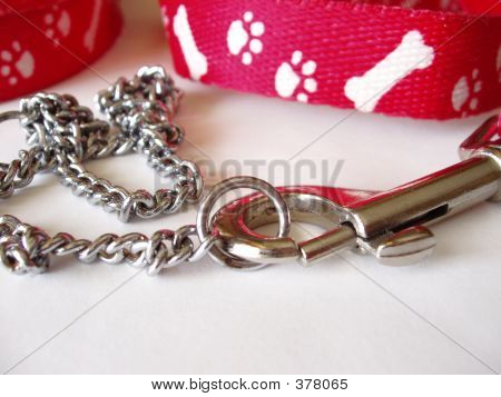 Collar And Leash