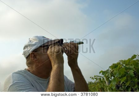 Grape Grower Using A Refractometer