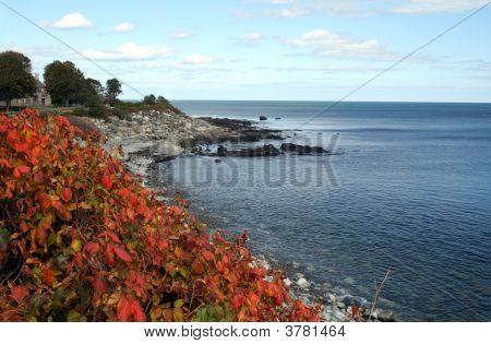 Autumn Coastline