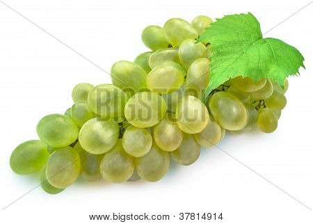 Juicy grape