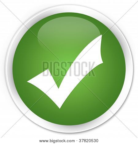Validate Icon Green Button
