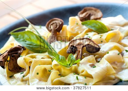 Close Up Of Taggliatelle With Funghi Porcini.