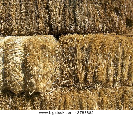 Bails Of Straw