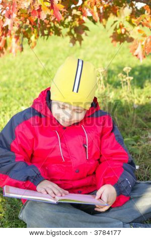 Reading Under Leaves