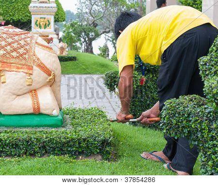Employees Cut Grass