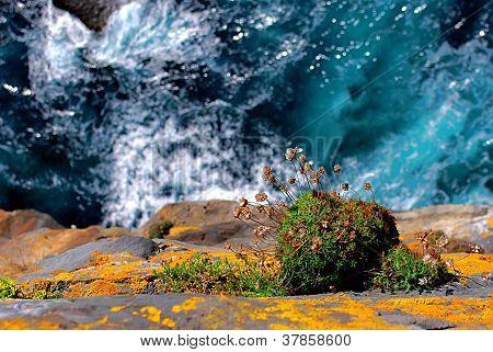 Cliff at Dun Aengus