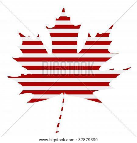 Striped Maple Leaf Silhouette