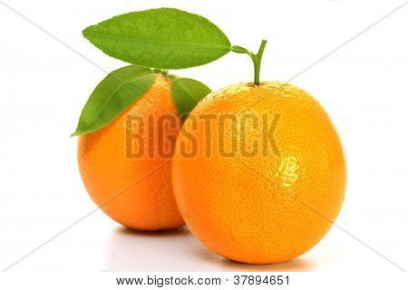 Fresh Orange's On White Background