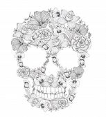 picture of sugar skulls  - Skull from flowers - JPG