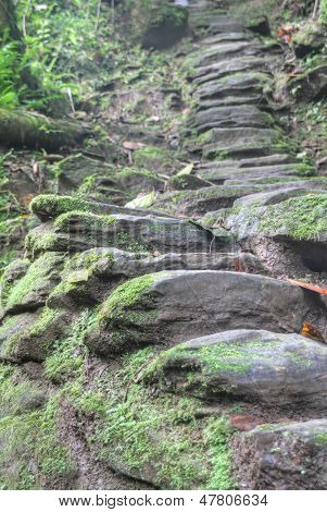 Indigenous stone stairs to Ciudad Perdida archeological site