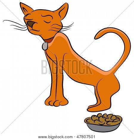 An image of a finicky cat who doesnt like his food.