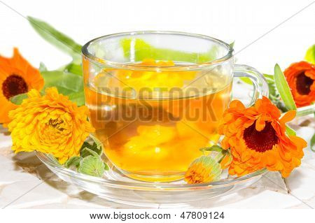 Herbal Tea Made From Calendula Officinalus