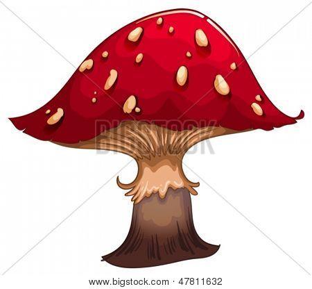 Beispiel für ein riesiger Roter Pilz auf weißem Grund