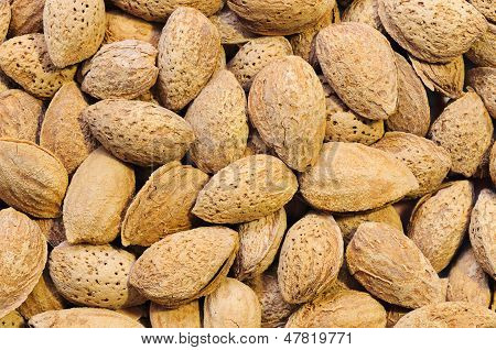 Almonds Close-up