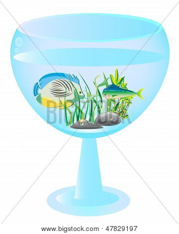 Tall Wine Glass Aquarium With Fishes