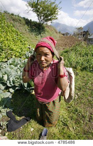 Nepalesische Frau arbeiten