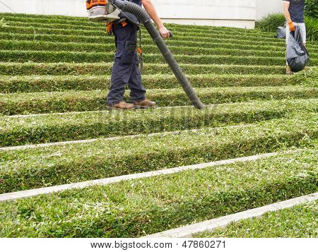 Landscaper With Leaf Blower