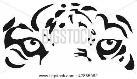 老虎的眼睛 库存矢量图和库存照片 | bigstock