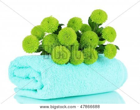 Beautiful green chrysanthemum with towel isolated on white