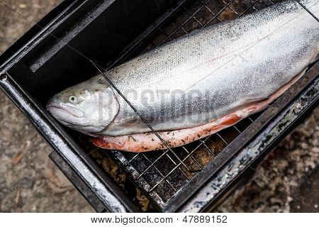 Raw Salmon On Grid In Camp Smoking Shed
