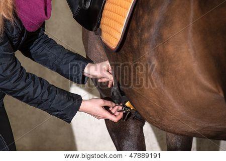 Girl Saddles Her Pony