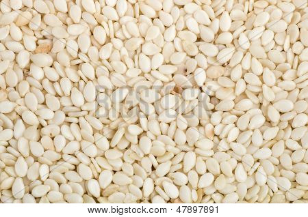 Background of dried sesame seeds