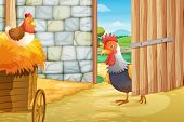 image of hen house  - Illustration of a rooster and a hen at the barnhouse - JPG