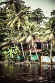 picture of alleppey  - House boat in backwaters near palms in Alappuzha Kerala India - JPG