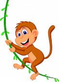 stock photo of chimp  - Vector illustration of Cute monkey cartoon swinging - JPG
