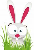 foto of bunny rabbit  - Illustration Cartoon of Rabbit with big Eye sit on the Grass - JPG