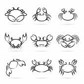 foto of cancer horoscope icon  - Set of vector crab icons on white background - JPG