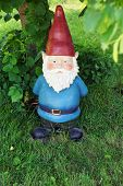 foto of gnome  - Big garden gnome underneath a tree looking at camera - JPG