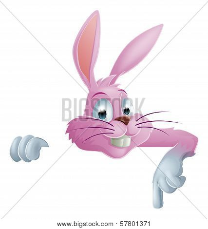 Pink Easter Bunny Rabbit Top Pointing