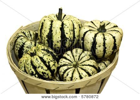 Ornamental Squash Isolated Against A White Background