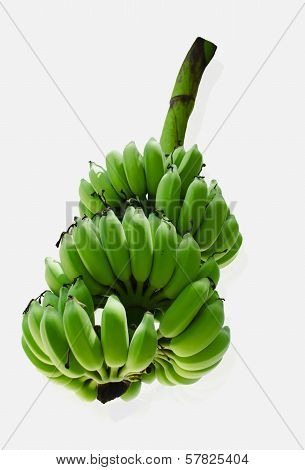 Raw Fresh Bunch Of Bananas On White Background.