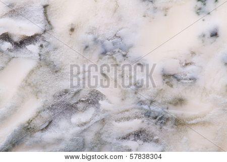 Blue Cheese Texture Closeup. Macro.