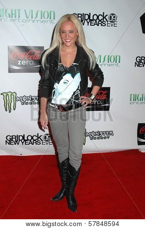 Lauren C. Mayhew  at the Gridlock New Year's Eve Party. Paramount Studios, Hollywood, CA. 12-31-08