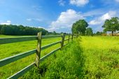 stock photo of farm-house  - Summer bright landscape blue sky and green fresh grass - JPG