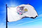 stock photo of flag pole  - Illinois  - JPG