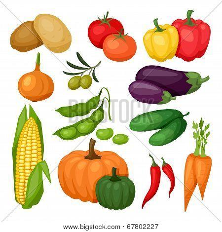Icon set of fresh ripe stylized vegetables.