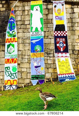 Greenpeace banners are displayed - hanging from the medieval wall in the City Of York