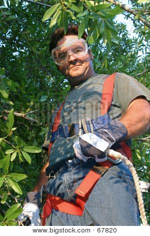 Worker In Safety Gear