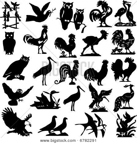 pieces of detailed vectoral bird silhouettes.