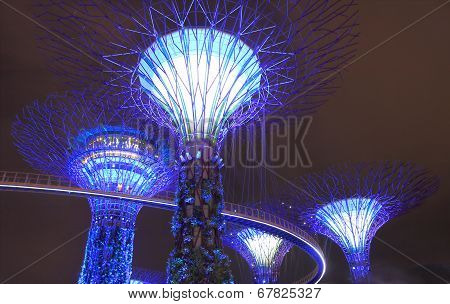 Contemporary architecture Supertree Grove Singapore